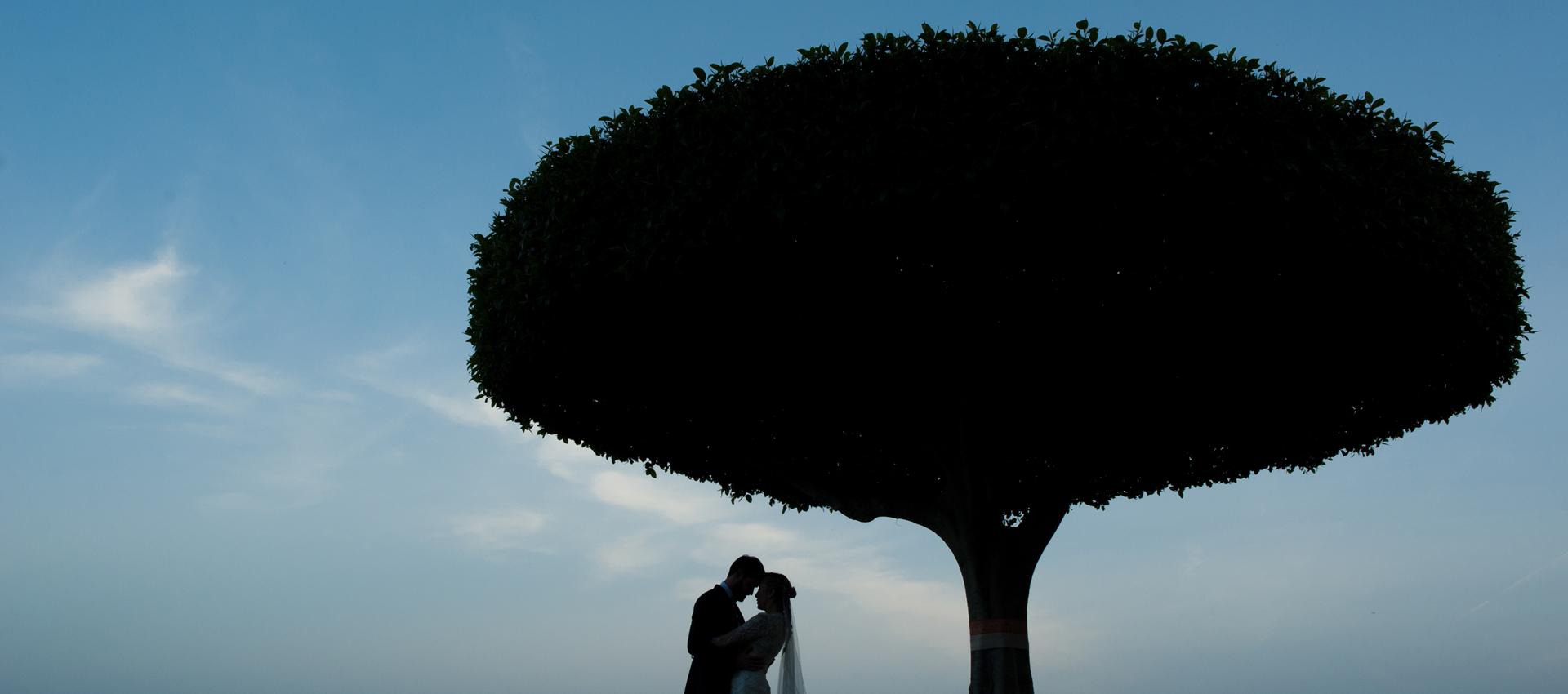 Maria-Jesus-y-Miguel-256-de-299IM Fotografía de Boda - video boda cadiz