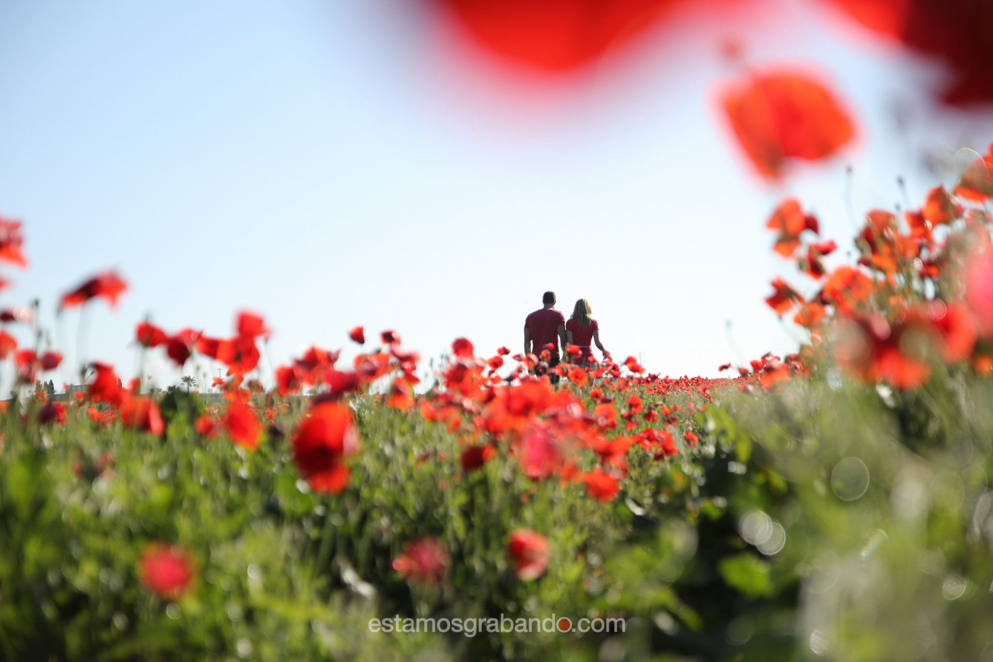 preboda-juan-reme-6 Rojo color amapola [Juan & Reme] - video boda cadiz