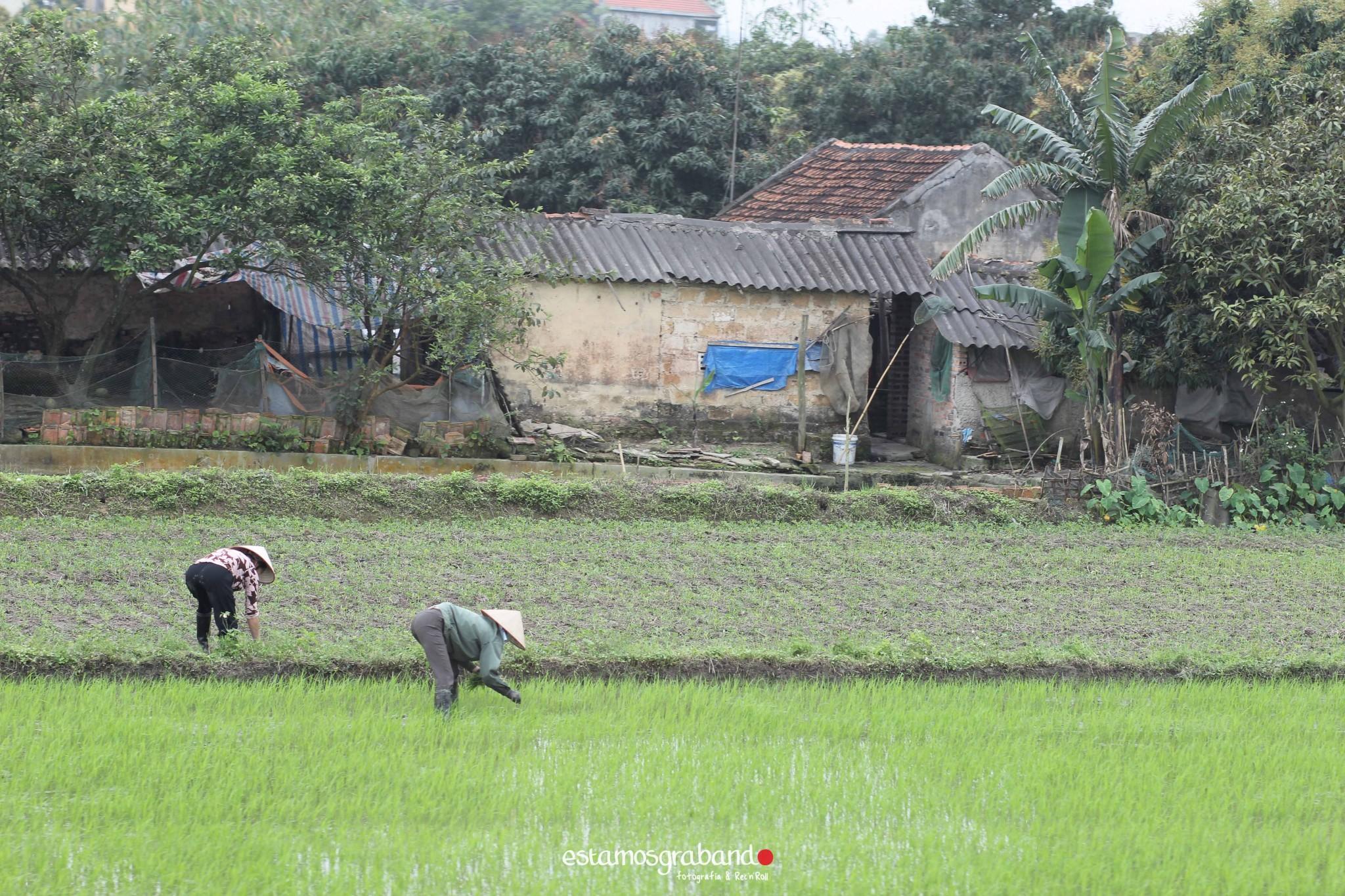 reportaje-vietnam_fotograficc81a-vietnam_estamosgrabando-vietnam_rutasvietnam_reportaje-retratos-fotos-vietnam_fotografia-vietnam_reportaje-estamosgrabando-fotograficc81a-vietnam-46 Pequeños grandes recuerdos de Vietnam en 100 imágenes - video boda cadiz