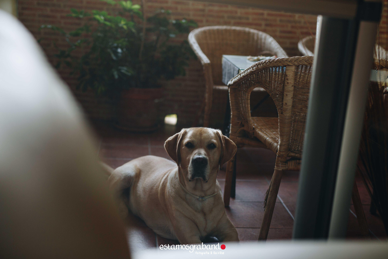 Manu-y-Anabel_Fotografía-Boda-Jerez_Real-Tesoro_-7 Boda Manu & Anabel. Jerez de la Frontera - video boda cadiz